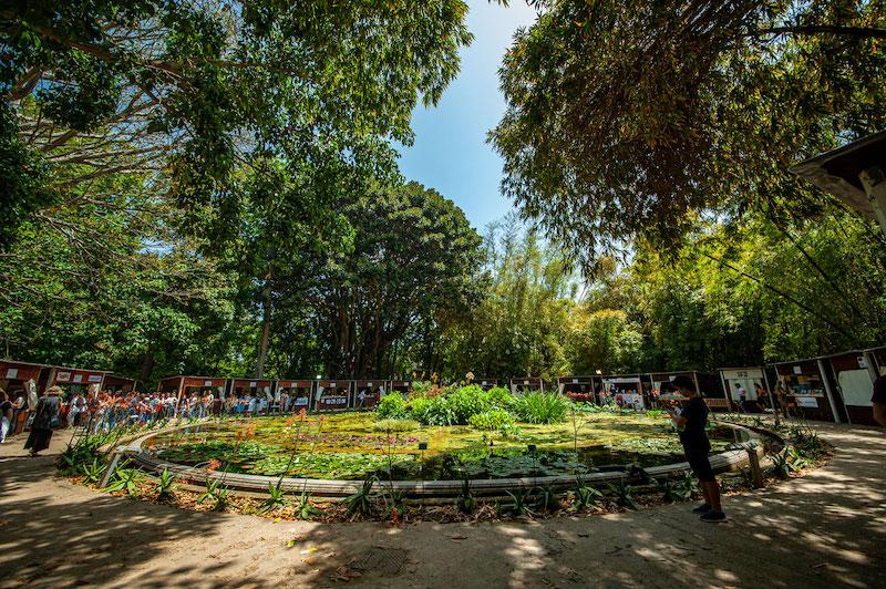 """Torna """"Una Marina di Libri"""", il Festival del Libro all'Orto Botanico"""